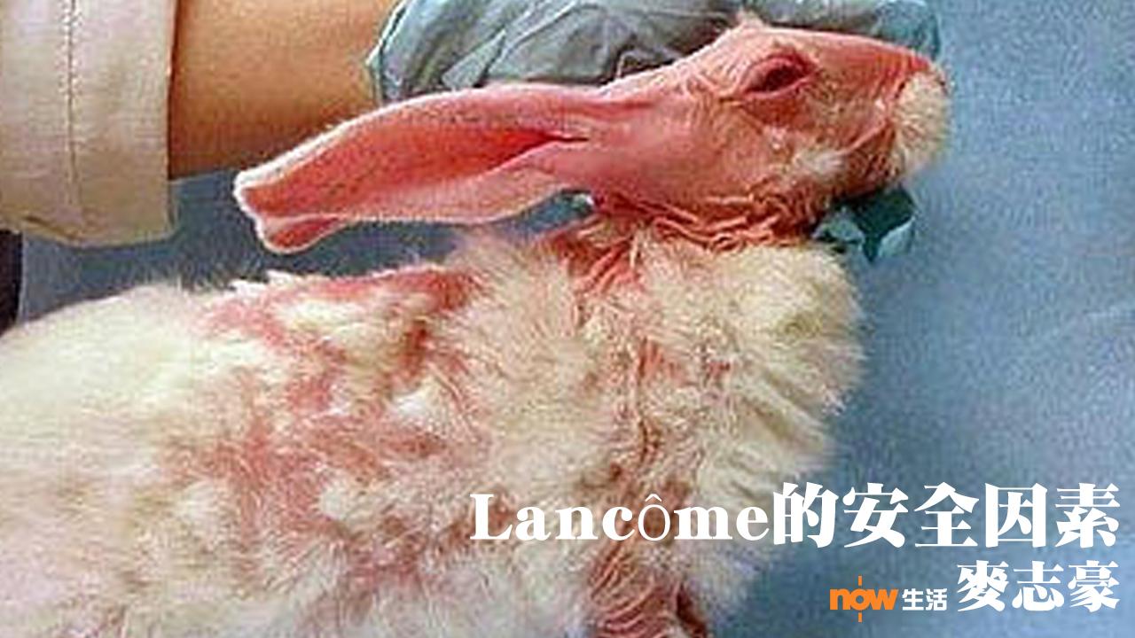 〈人面獸心〉Lancôme的安全因素-麥志豪