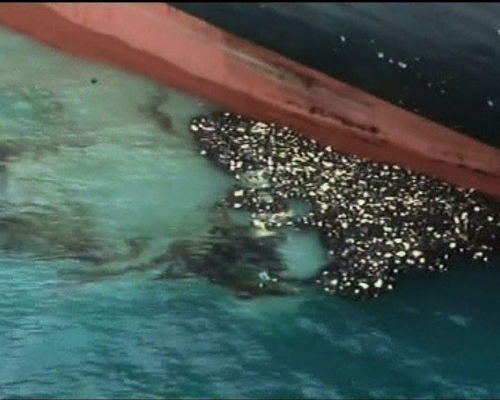 新西蘭擱淺貨輪船長被捕