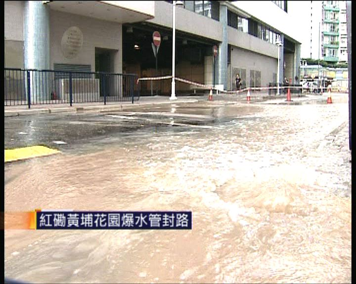 紅磡黃埔花園爆水管封路