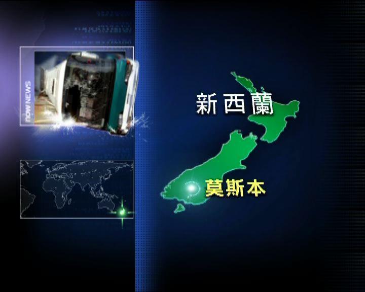 新西蘭載中國旅客旅遊巴翻車四傷