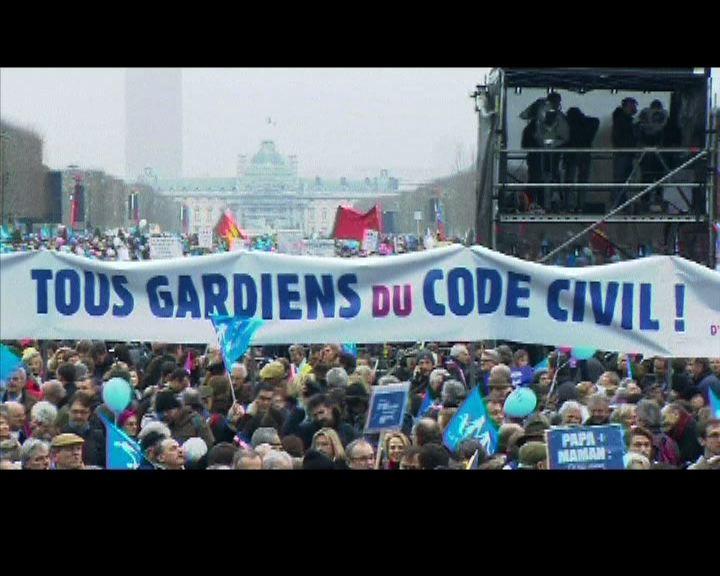 法國大型遊行反同性婚姻合法化