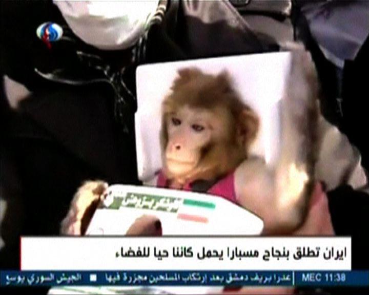 伊朗聲稱再度成功送活猴上太空