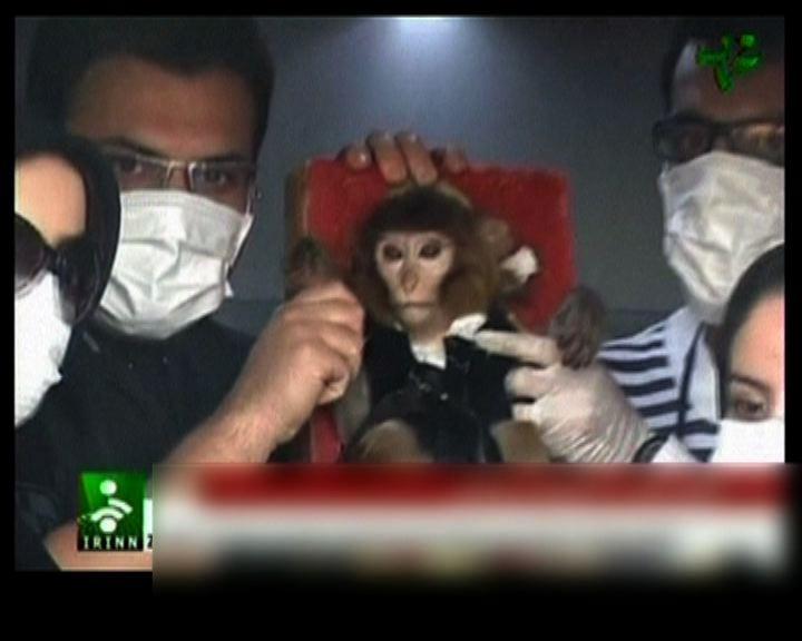 伊朗稱成功送活猴子上太空