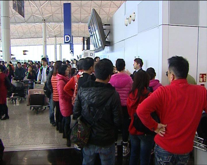 旅行社:加團費客量仍增加逾兩成