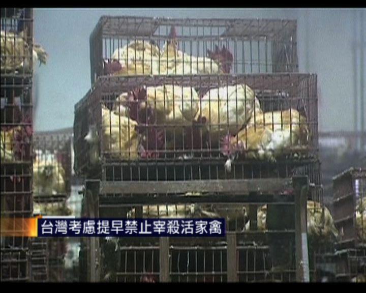 台灣考慮提早禁止宰殺活家禽
