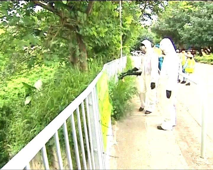 有村民指食環署過往滅蚊馬虎