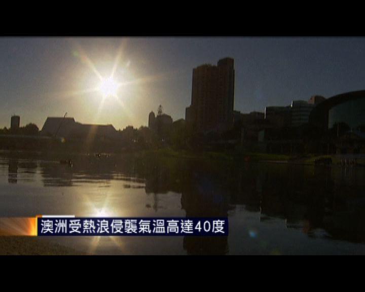 澳洲受熱浪侵襲氣溫高達40度