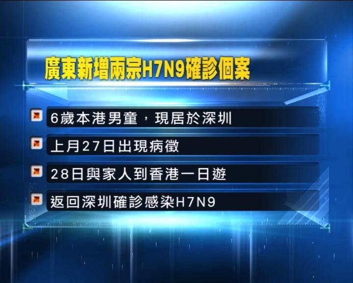 居深圳本港男童感染H7N9禽流感
