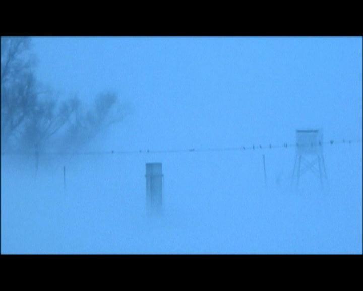 美國多處再受嚴寒暴風雪吹襲