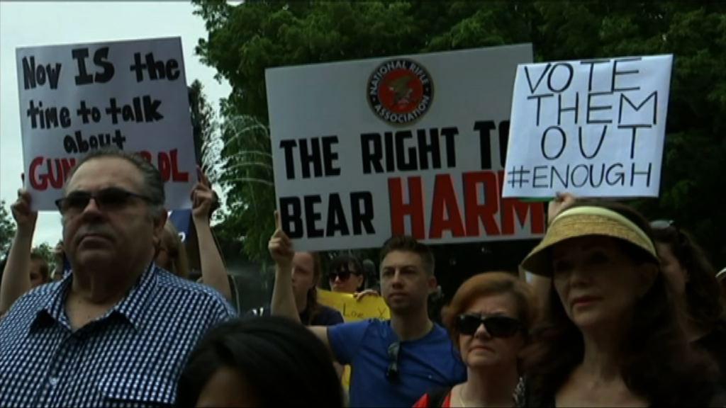 華盛頓稍後有大型遊行爭取加強槍管