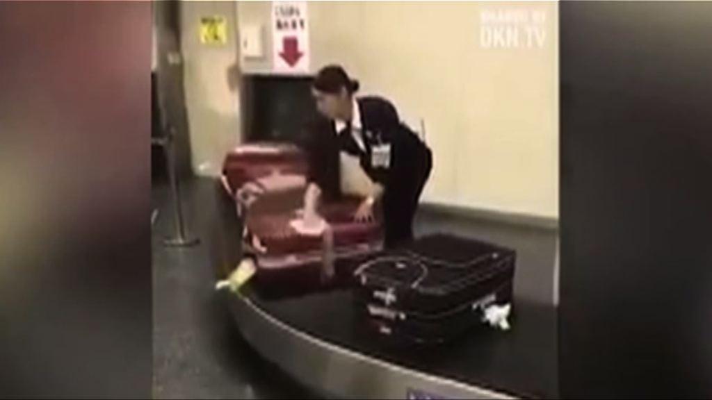 【環球薈報】日本女地勤溫柔擦行李箱獲盛讚