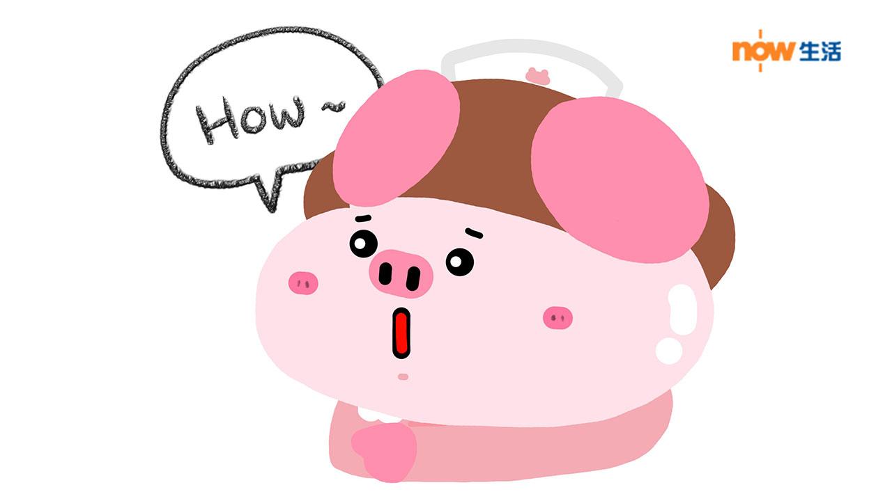 〈豬事八卦〉好誇啫-寶豬姑娘