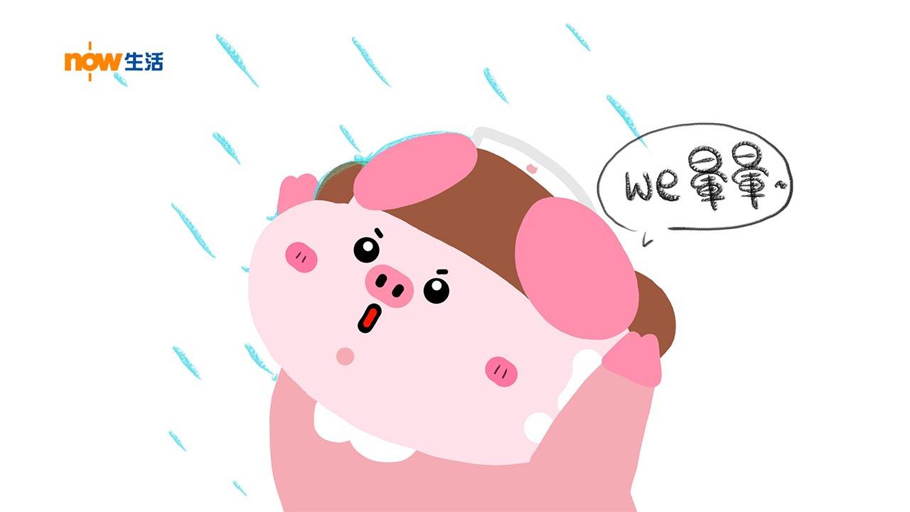 〈豬事八卦〉停雨-寶豬姑娘