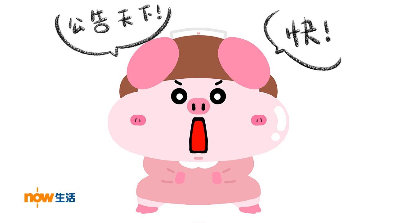 〈豬事八卦〉姨媽到-寶豬姑娘