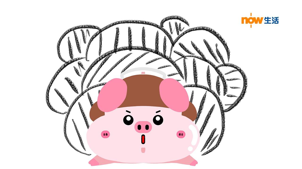 〈豬事八卦〉母愛-寶豬姑娘