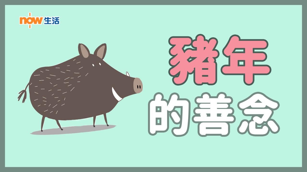 〈人面獸心〉豬年的善念-麥志豪