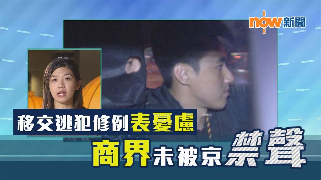 【政情】移交逃犯修例表憂慮 商界未被京禁聲