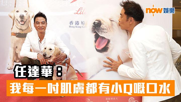 【拍導盲犬電影】任達華:我每一吋肌膚都有小Q嘅口水