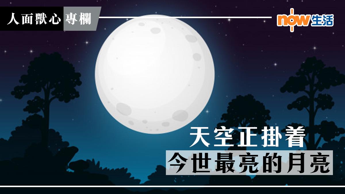 〈人面獸心〉天空正掛着今世最亮的月亮-麥志豪