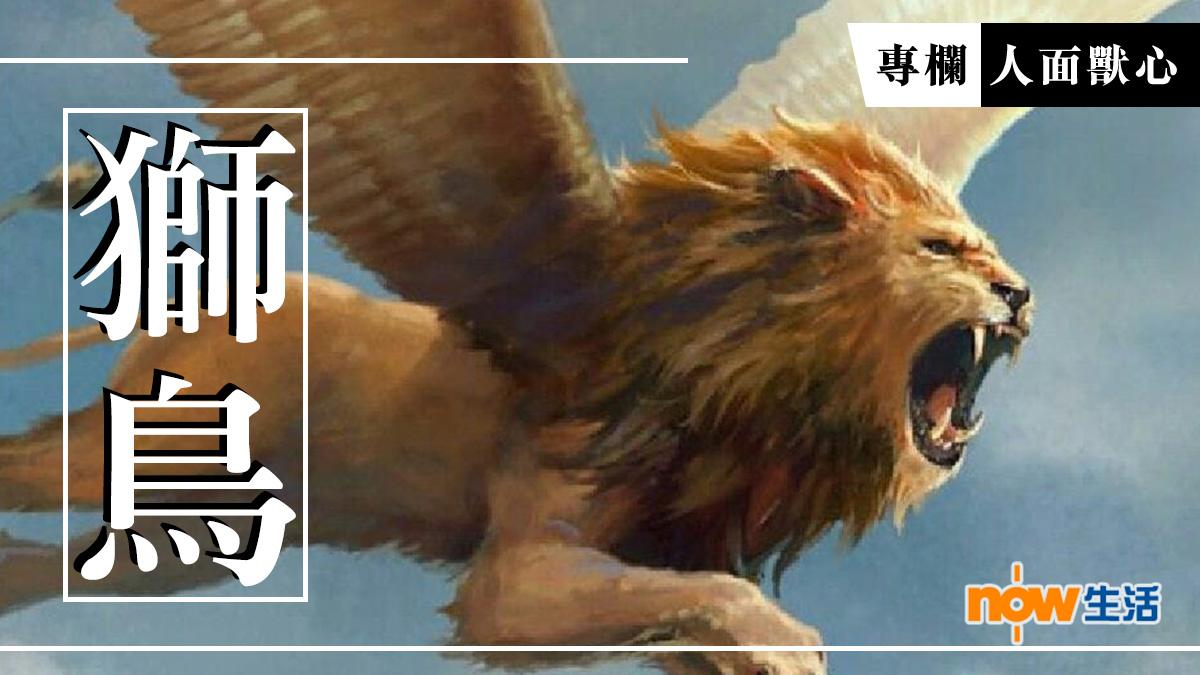 〈人面獸心〉獅鳥-麥志豪