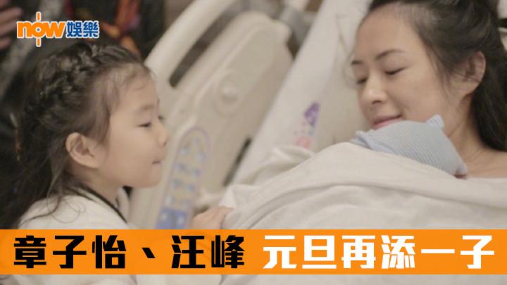 【追仔成功】章子怡誕元旦寶寶:最美新年禮物