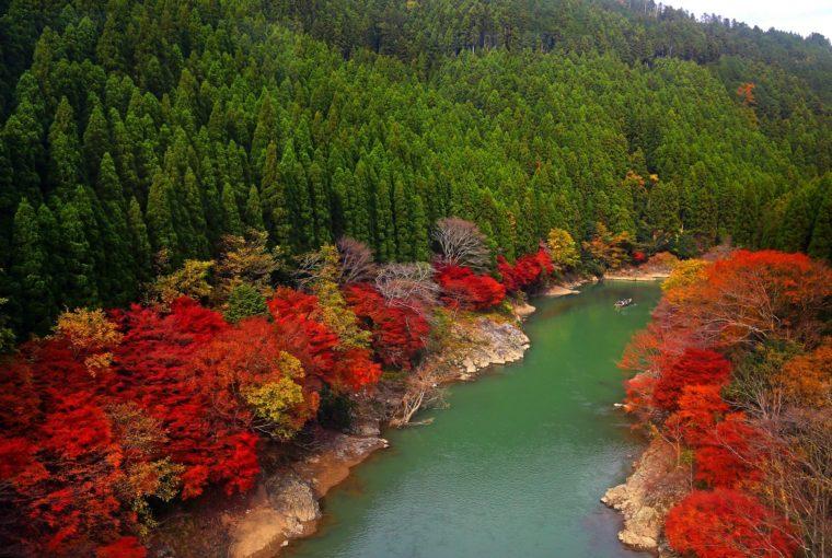 【日本】京都嵐山小火車行程懶人包