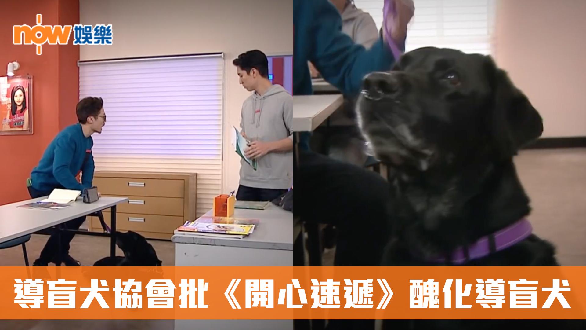 香港導盲犬協會批《開心速遞》情節醜化導盲犬加深歧視