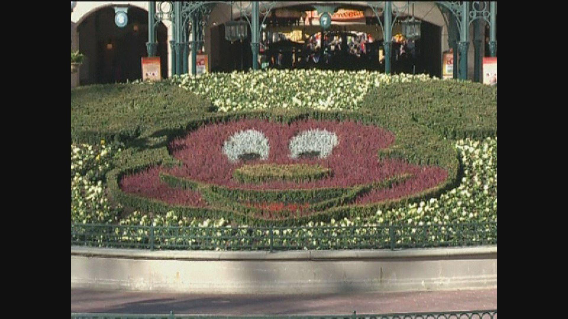 法國巴黎迪士尼一名維修員工確診 樂園繼續開放