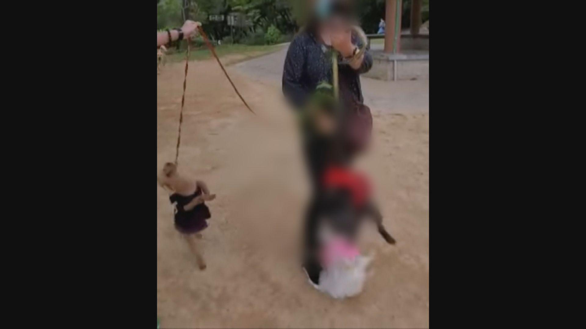 警拘一名64歲女子涉嫌在西貢殘酷對待動物