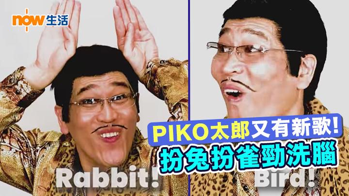 〈好笑〉PIKO太郎新歌扮兔仔雀仔 因疫情在家以手機拍攝MV!