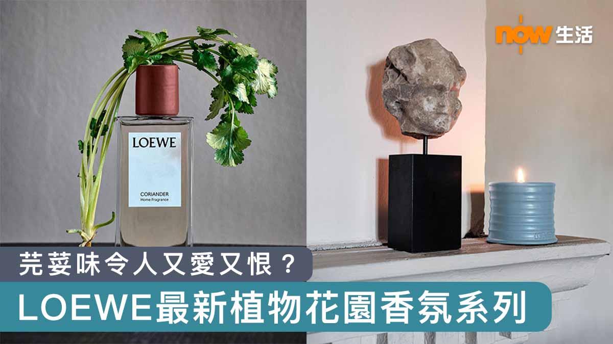 〈好潮〉LOEWE最新植物花園香氛系列 芫荽味令人又愛又恨?