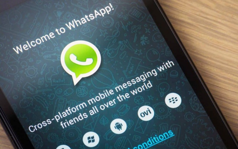 WhatsApp 新增限時訊息功能!無論是個人或是群組,對話 7天後自動清除