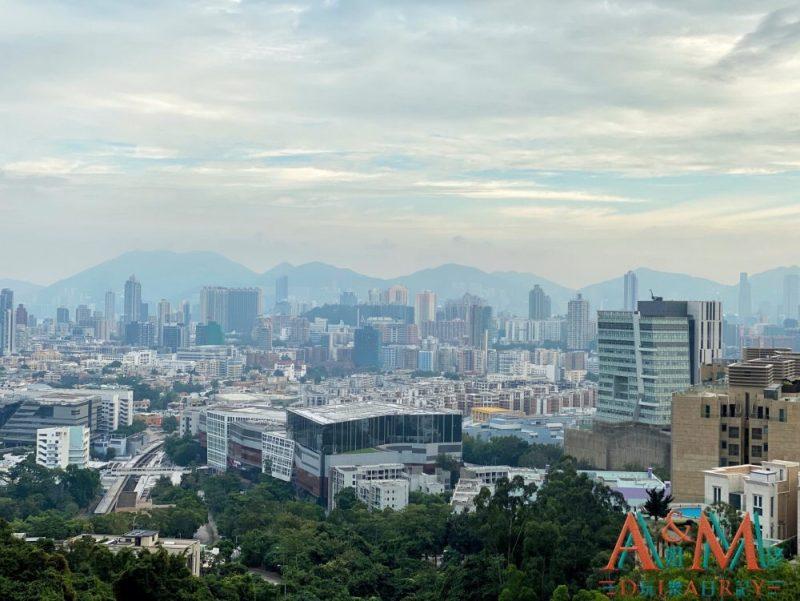 〈好遊〉眺望九龍半島 龍翔道觀景台