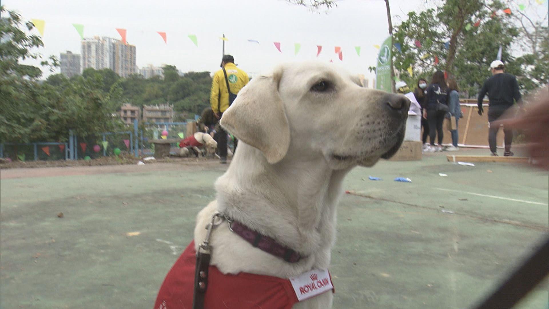 【即日焦點】12港人案十人正式被控偷渡或組織偷渡 未成年兩人擇日舉行不公開聽證;香港首間導盲犬訓練學校料明年11月落成