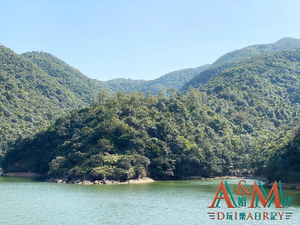 〈好遊〉香港唯一休憩水塘 黃泥涌水塘花園