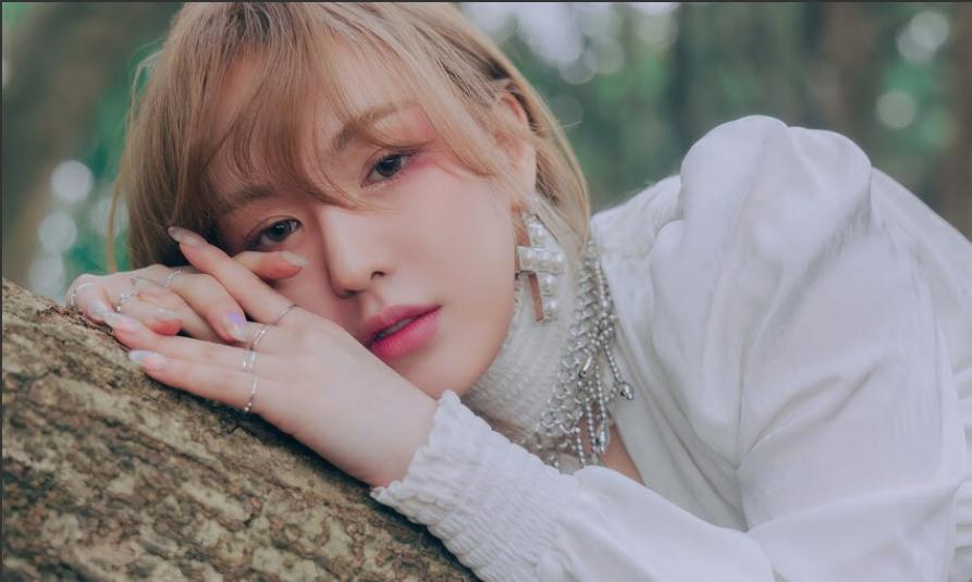 Red Velvet Wendy回歸被質疑整容 揭下墜事故後辛酸復原史