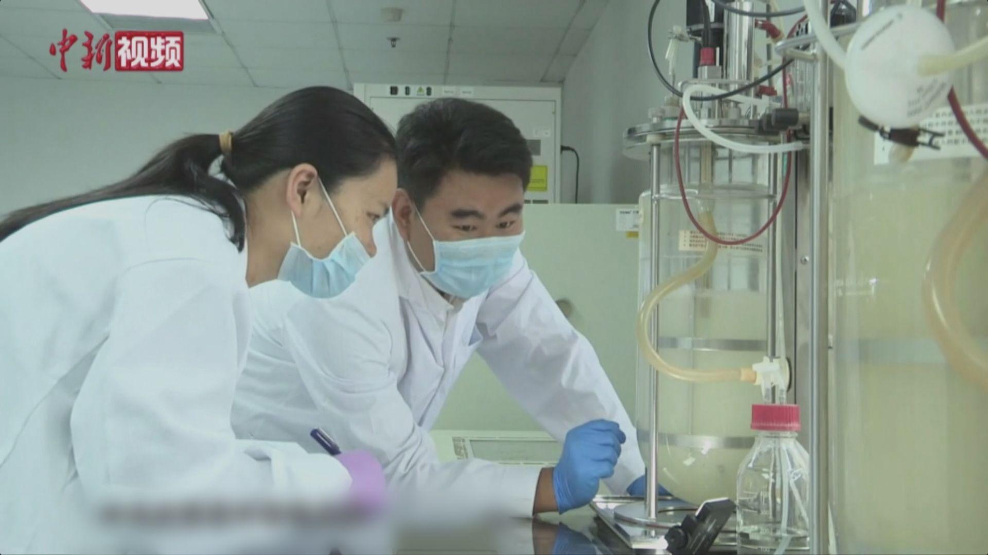 中國首次在實驗室實現人工合成澱粉