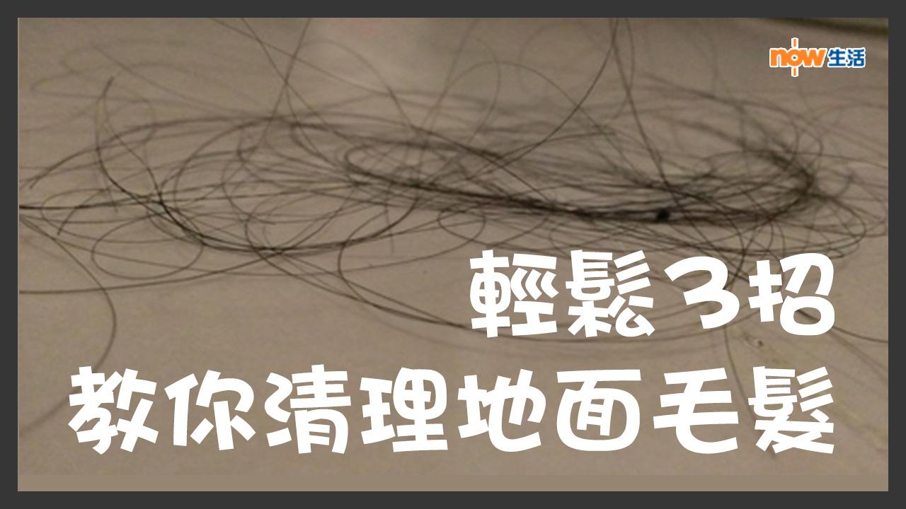 〈好Life〉輕鬆3招 教你清理地面毛髮
