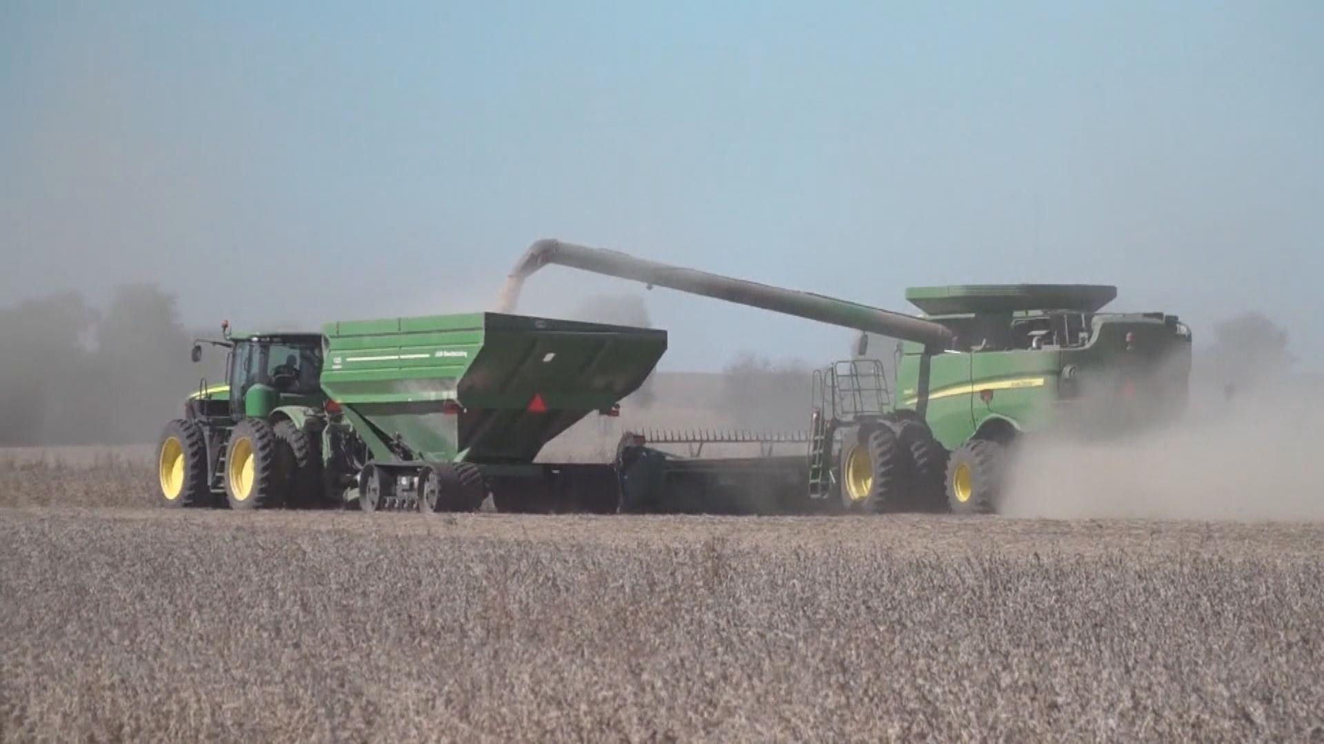 傳中國擬加快採購美國農產品