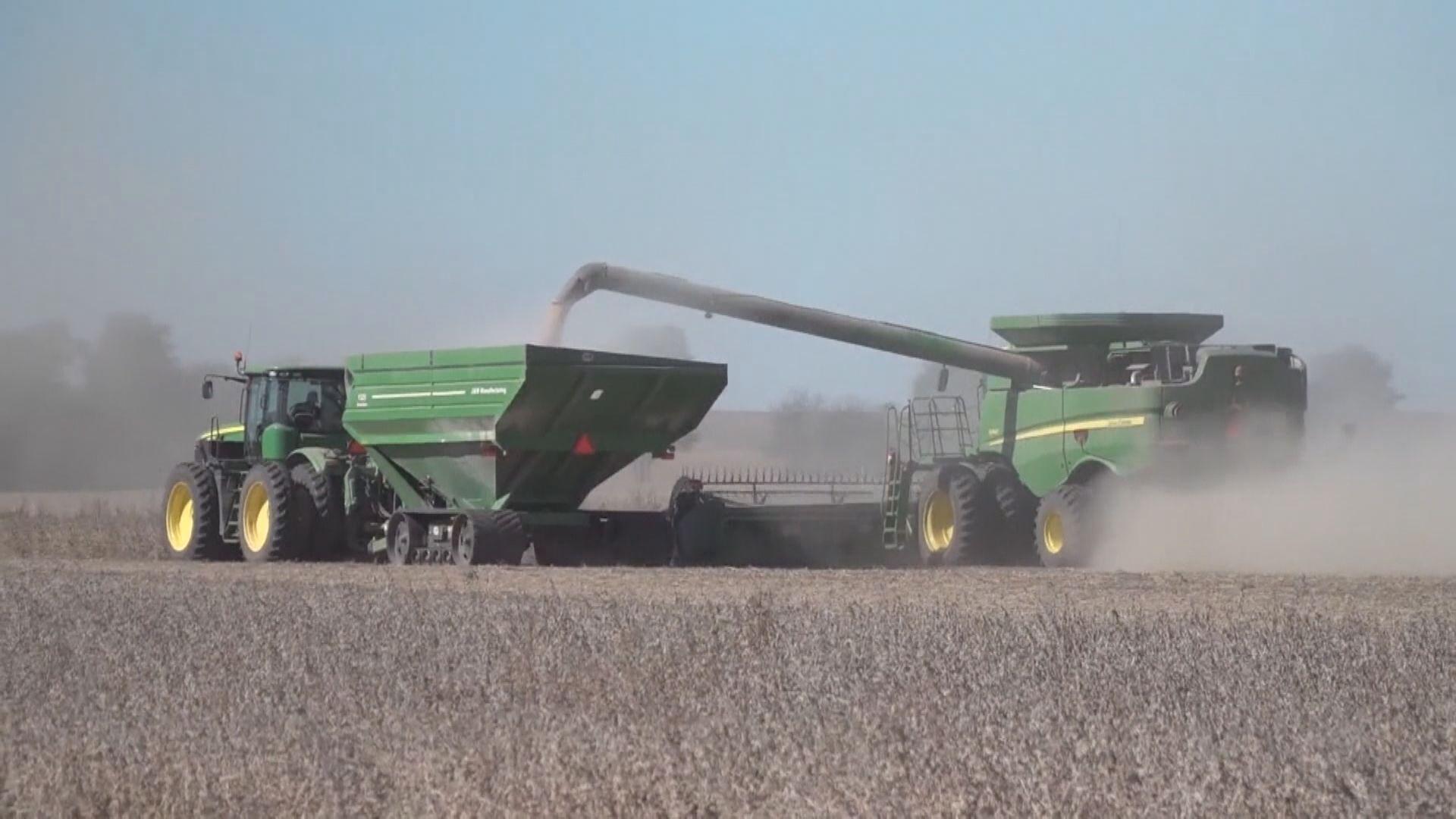 中國擬增購美國大豆