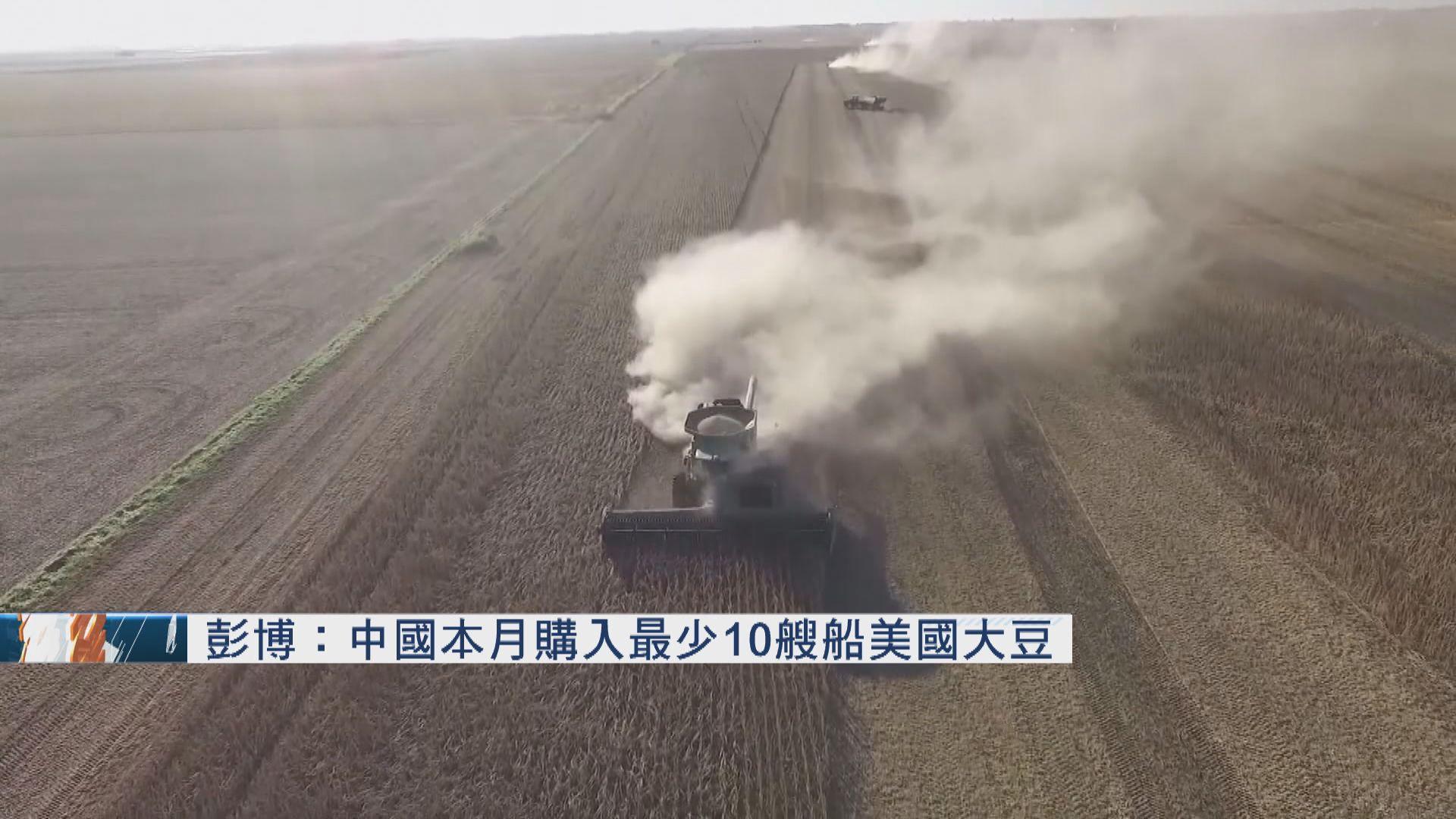 中國繼續購買美國大豆