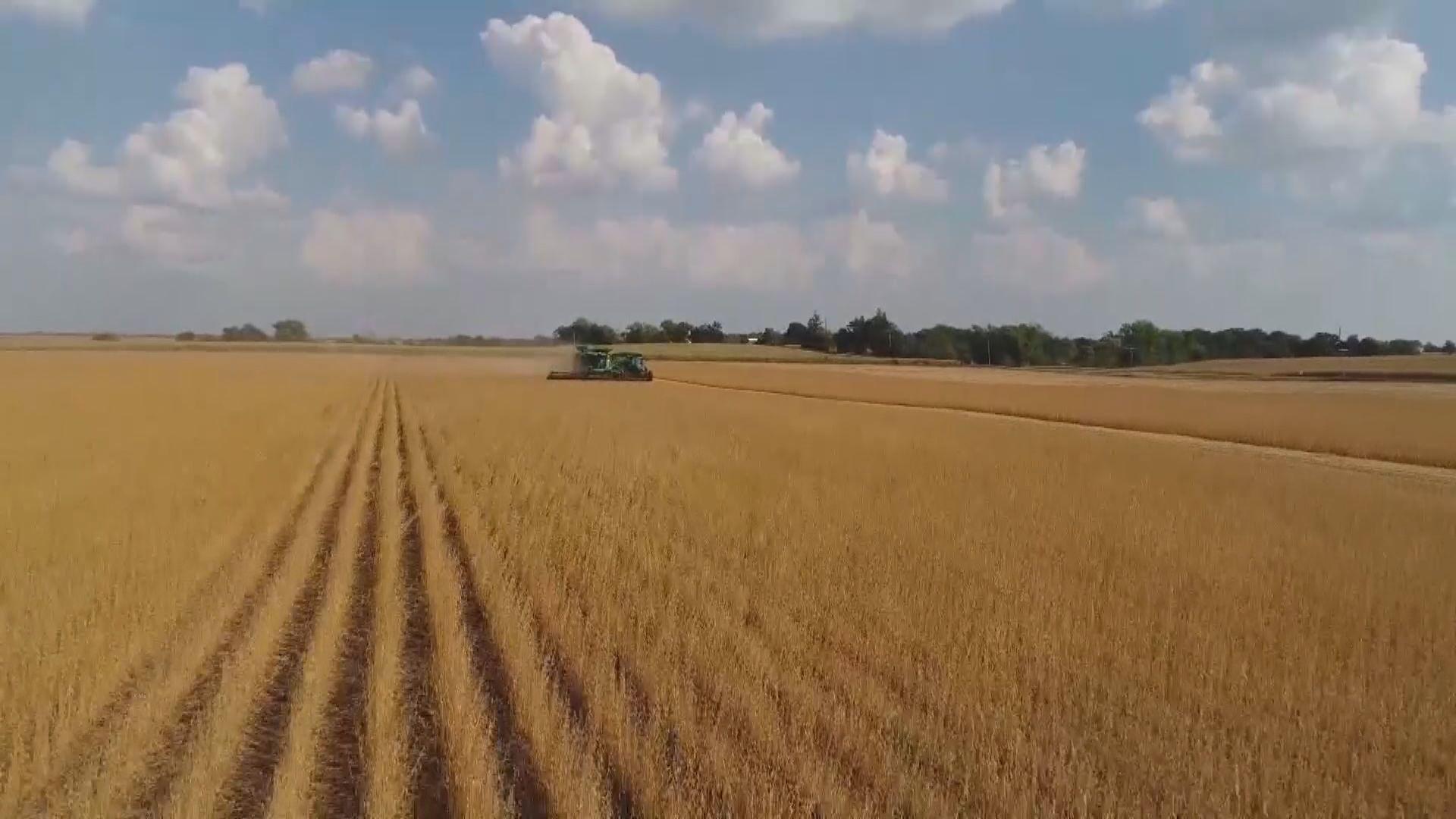 【滿載善意】中國擬下月談判前進口美國農產品