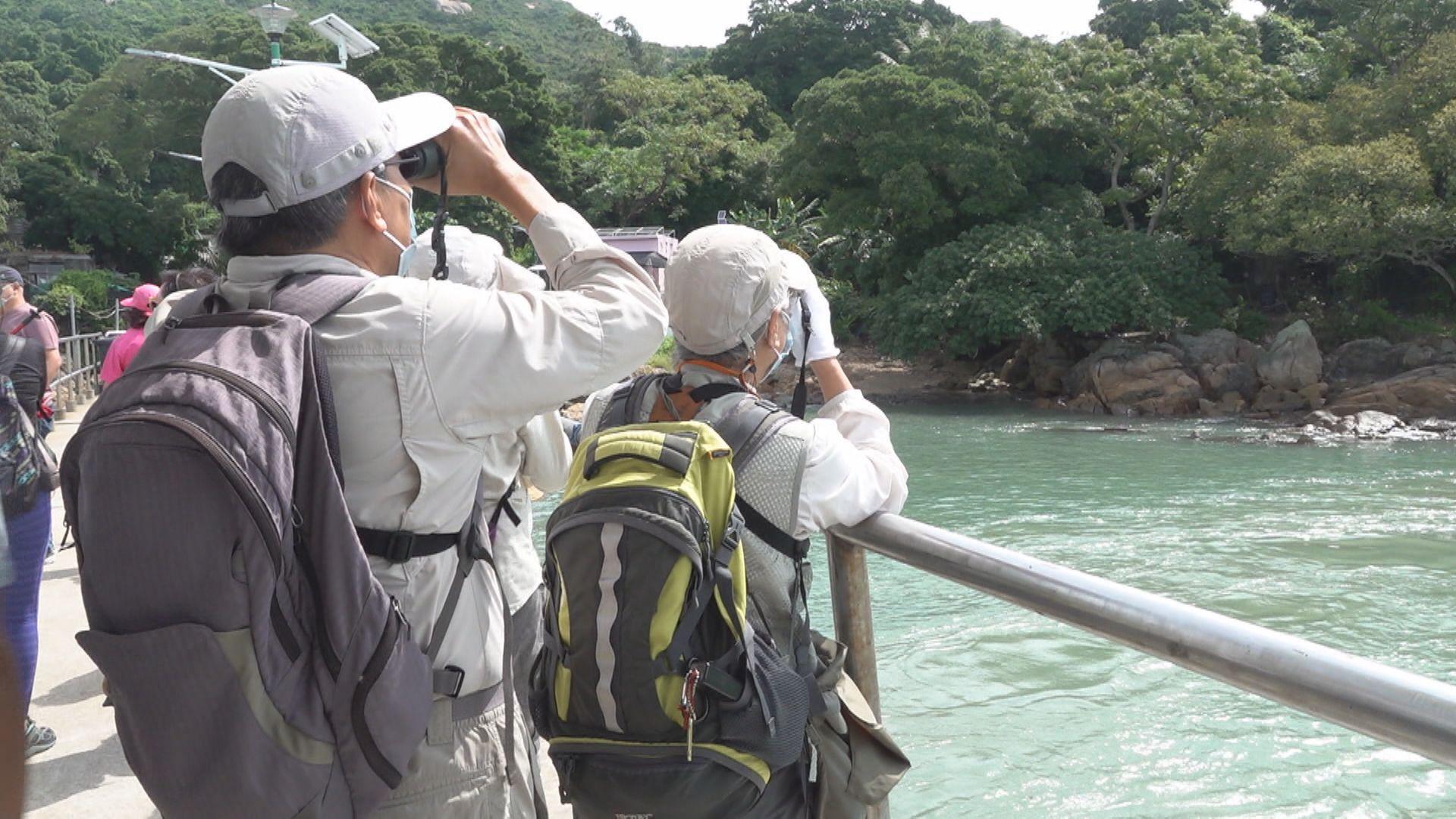 去年訪港旅客插水式跌近94%