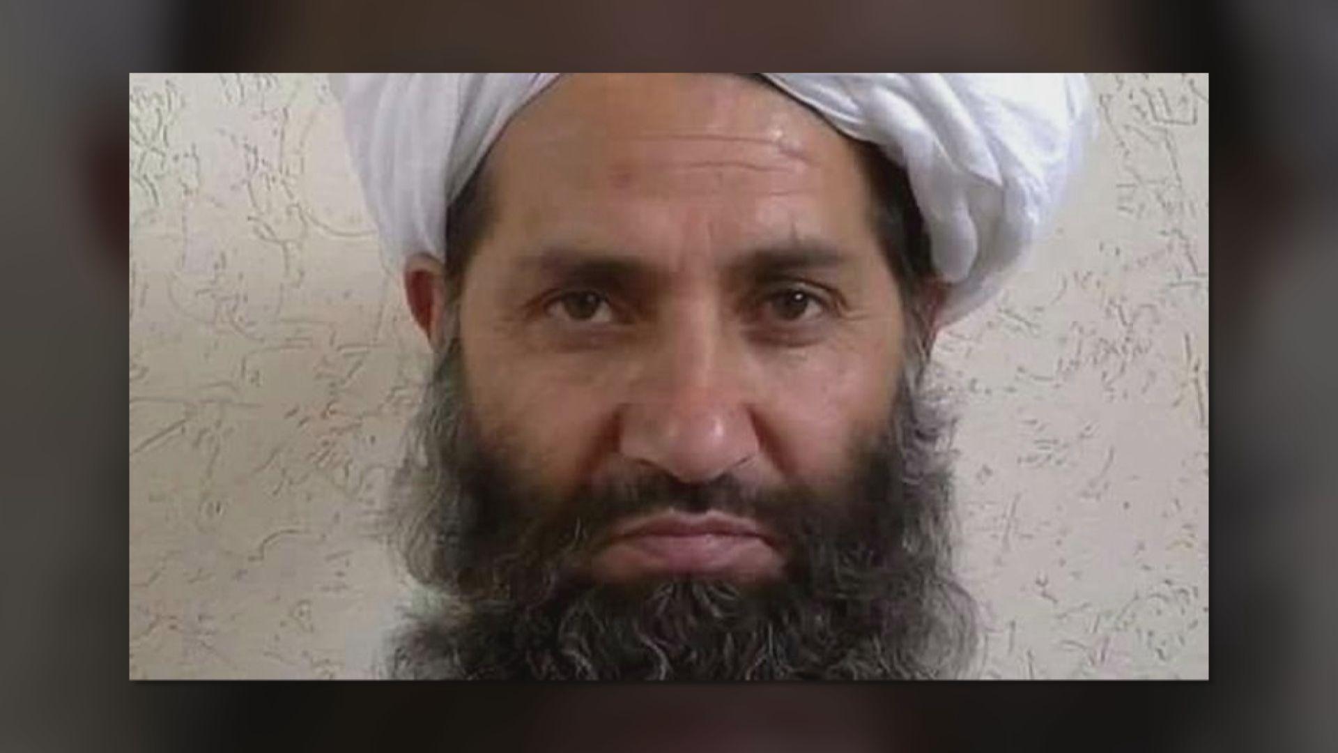 塔利班日內將宣布組成新政府內閣