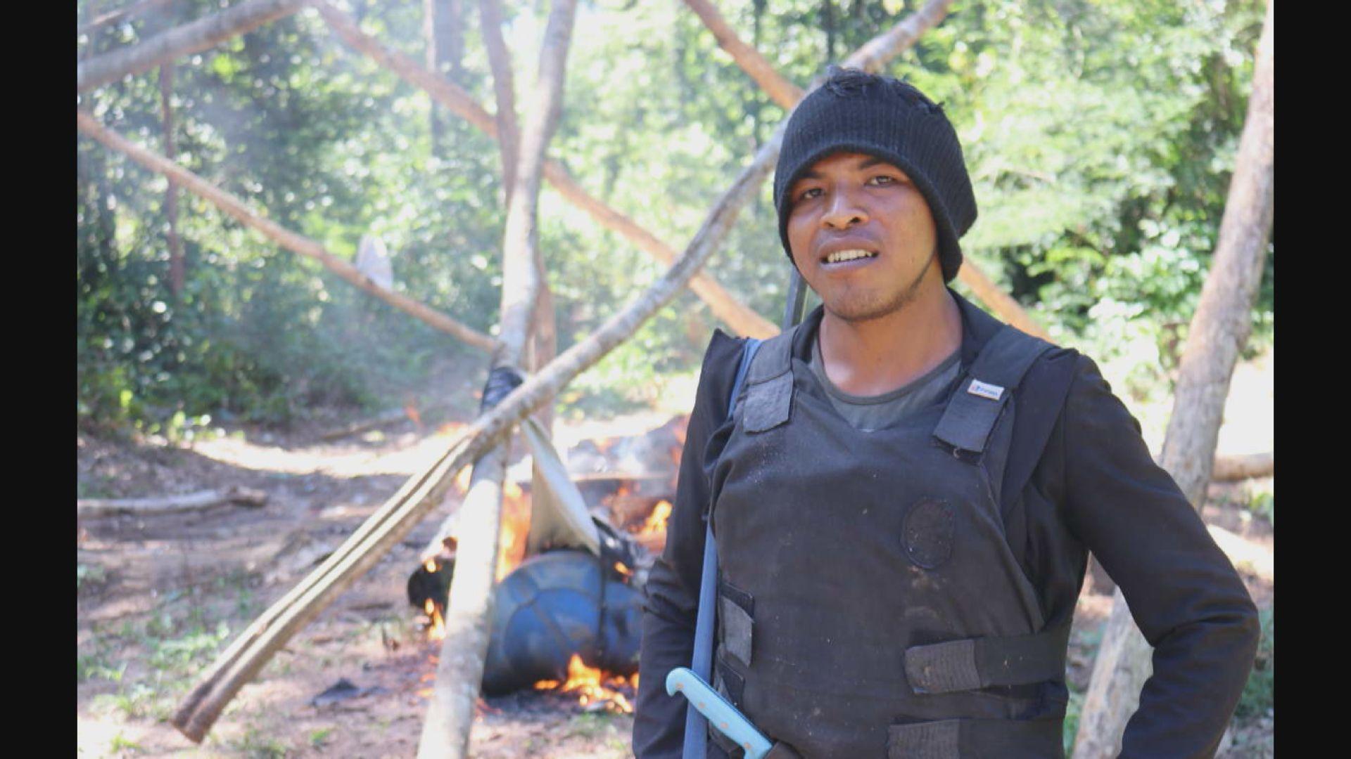 亞馬遜雨林土著遭非法伐木者射殺