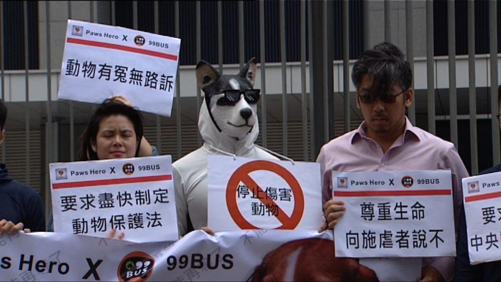 團體請願促政府加強保護動物