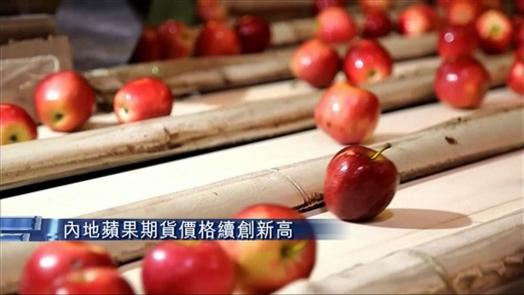 【曾漲停板】內地蘋果期貨價格續創新高