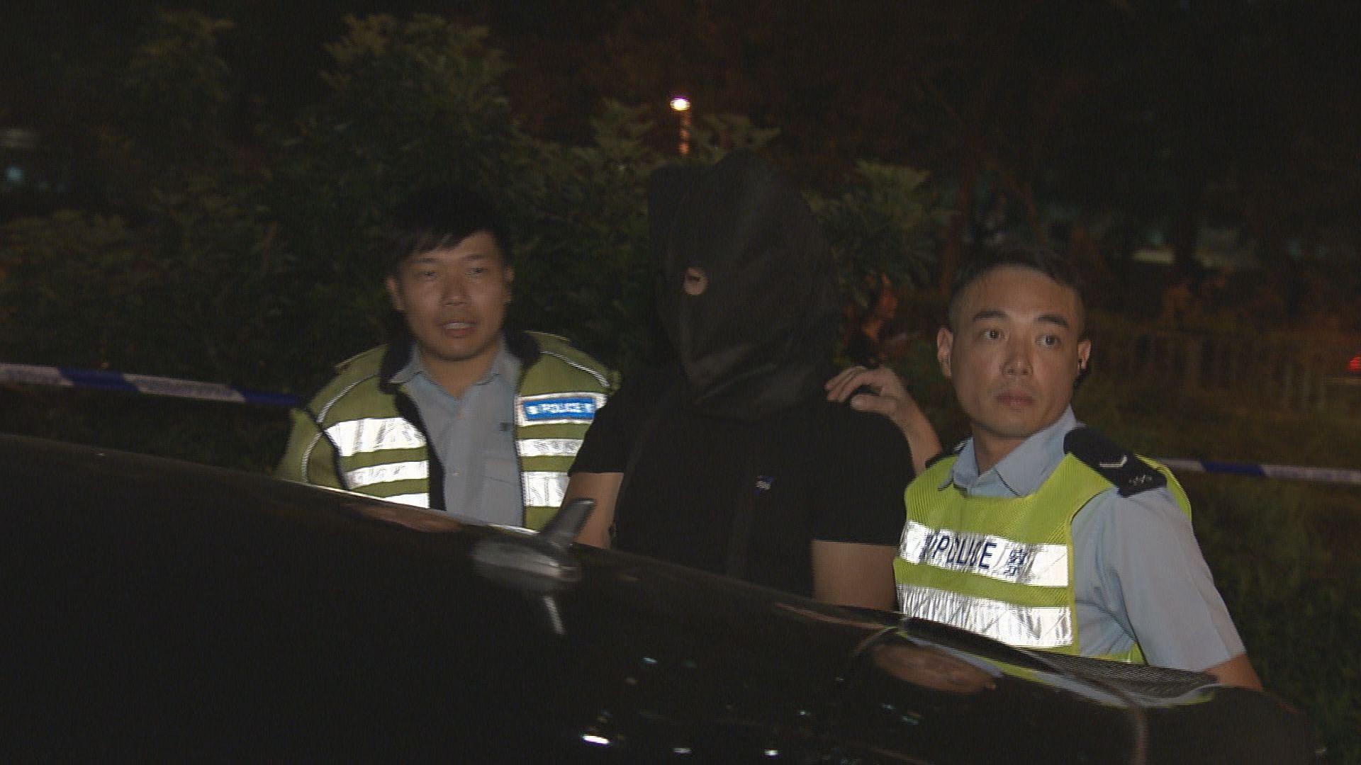大埔私家車司機涉瘋駕被捕一警傷