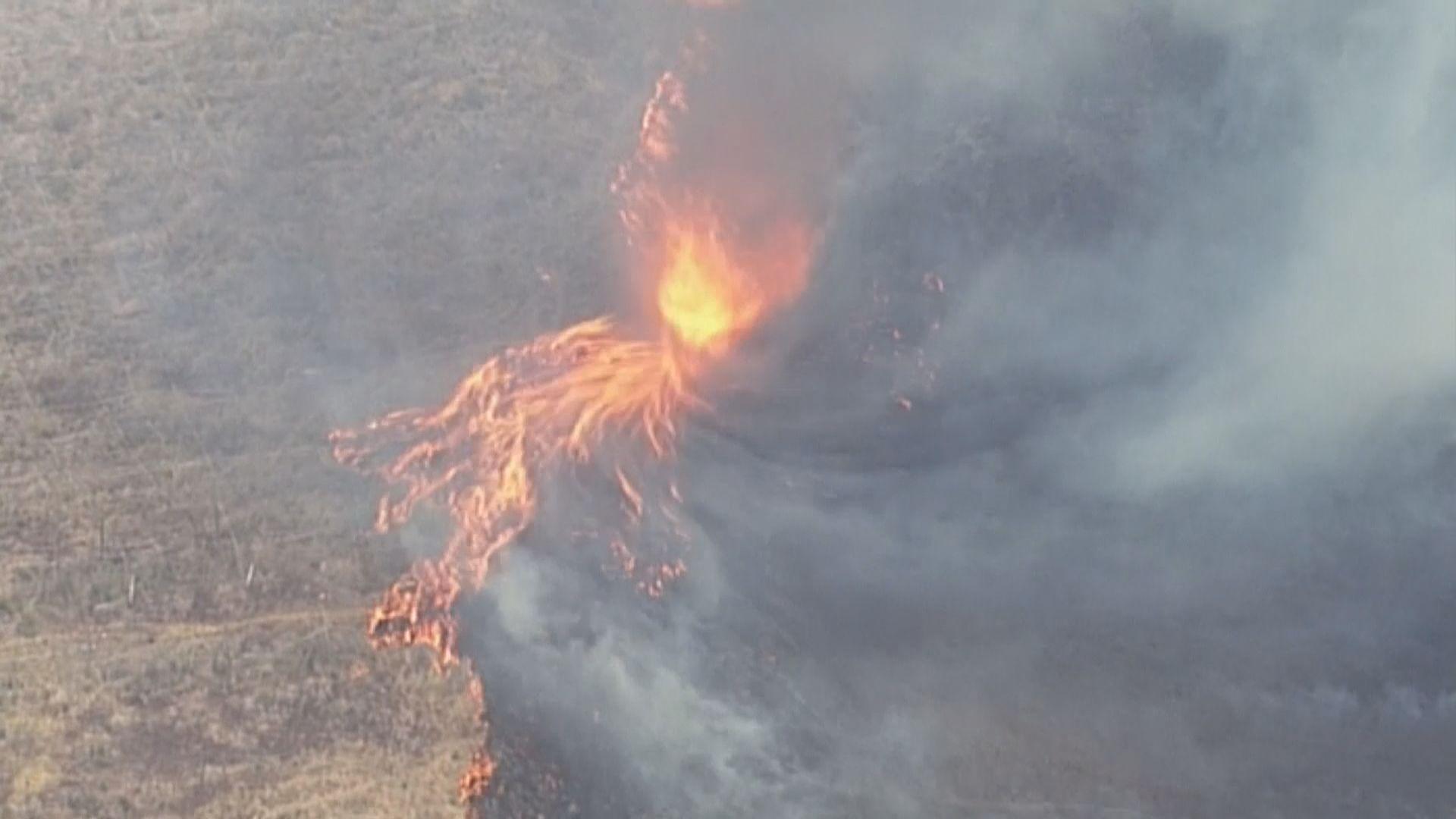 澳州高溫天氣下多處山火持續