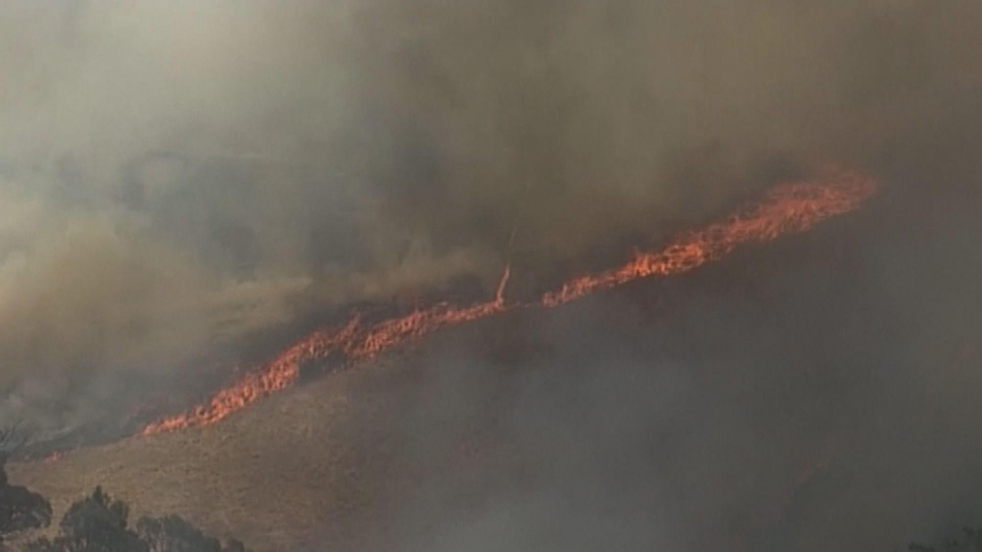 澳洲山火持續 逾四千人從水路疏散